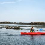 Group Kayaking at Dalkey Islands, Dublin
