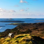 Wilderness Ireland Road Cycling Clifden to Achill (6)