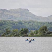 Kayak Ox Mtns