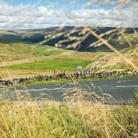 5 Countries Road Cycling with Wilderness Scotland 7