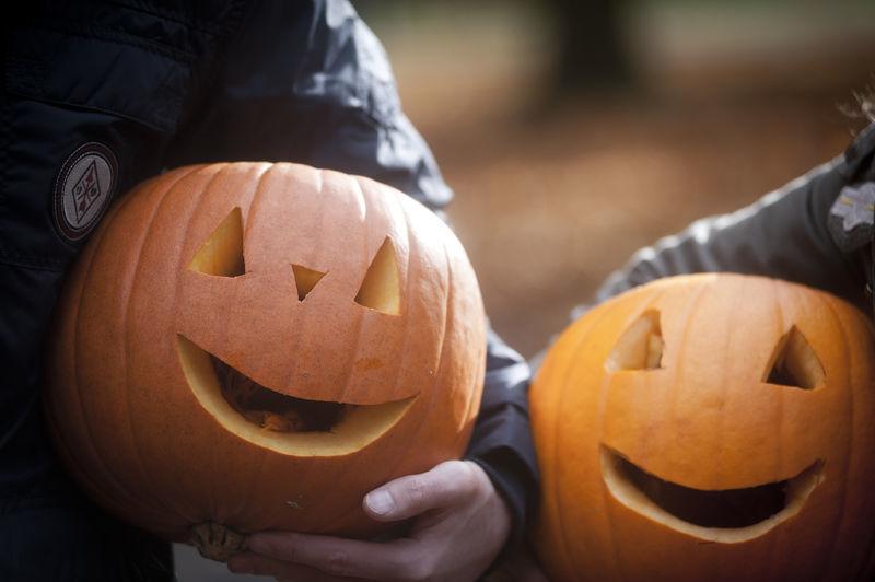 Origins of Halloween: Ireland Celtic Festival Samhain - Wilderness ...