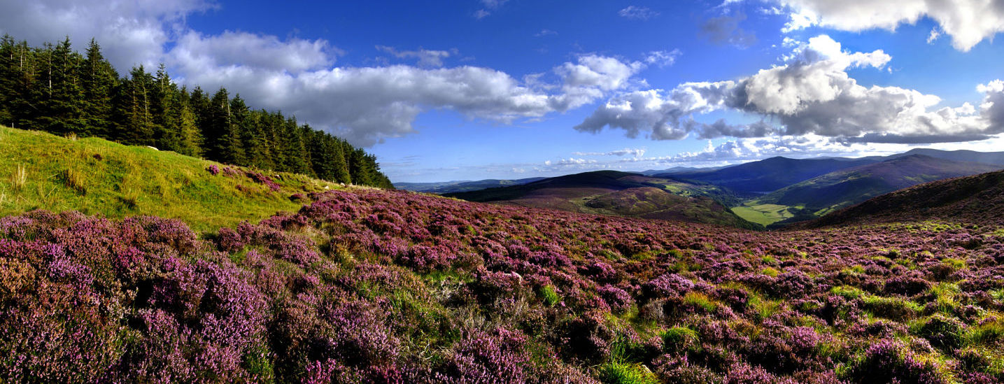 National Parks of Ireland - Wicklow National Park