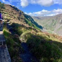 Follow the Wicklow Way through the heathery hills!