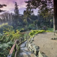 Explore Powerscourt's gardens, rated among the best in the world by Nat Geo!